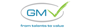 GMV Consulting